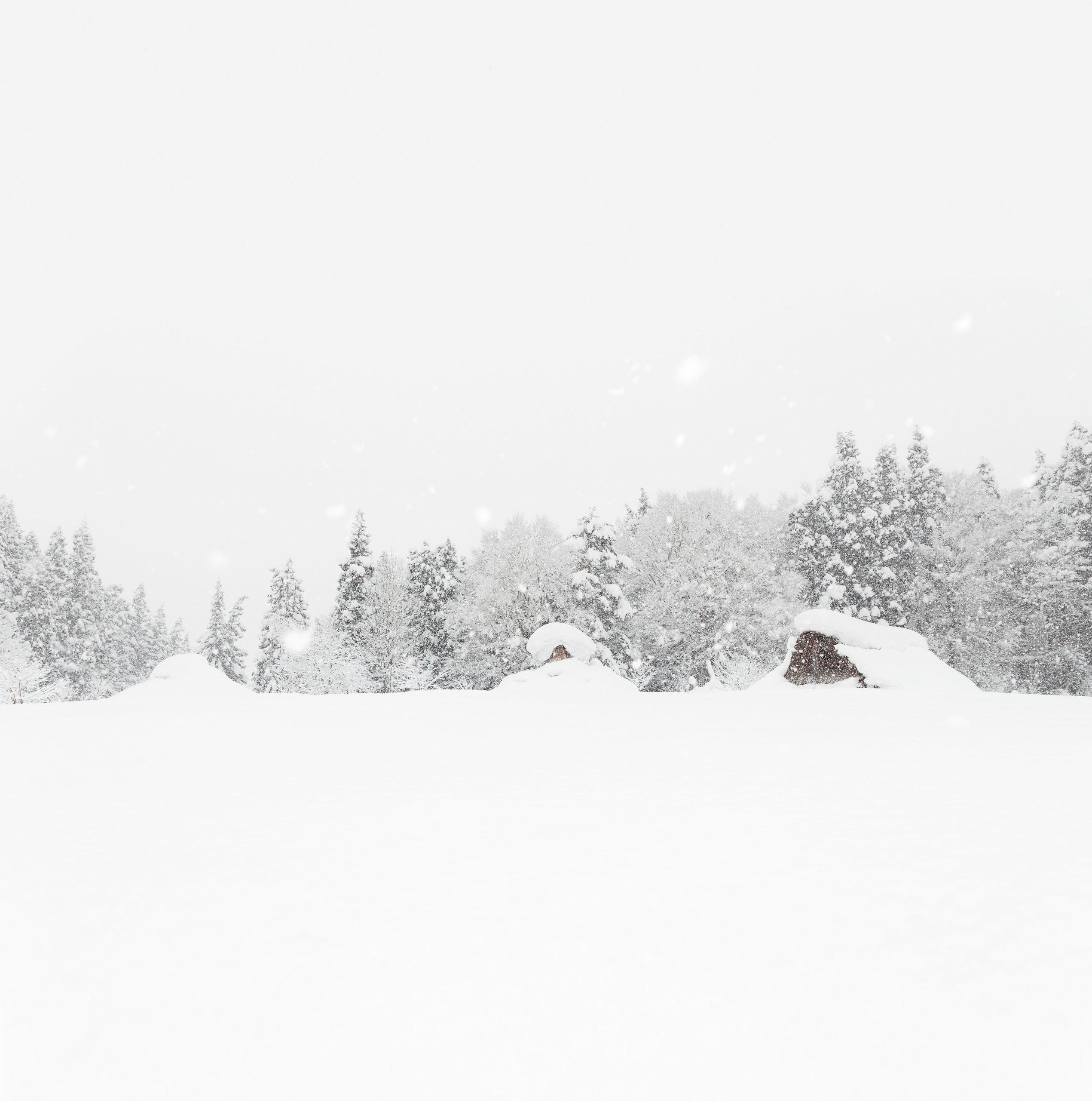 Jomon village in the snow
