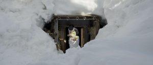 YUKIMURO-Snow room