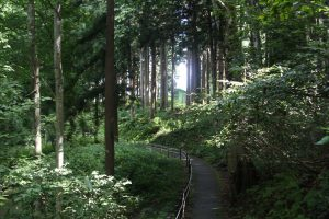 Geopark_Naeba